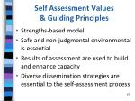 self assessment values guiding principles