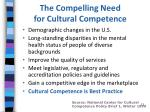 the compelling need for cultural competence