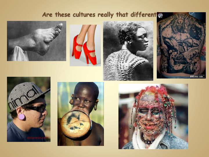 Are these cultures really that different?