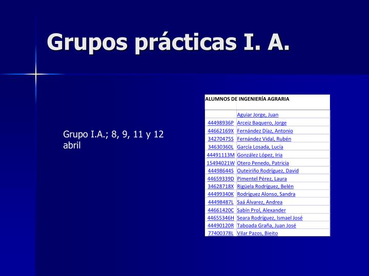 Grupos prácticas I. A.