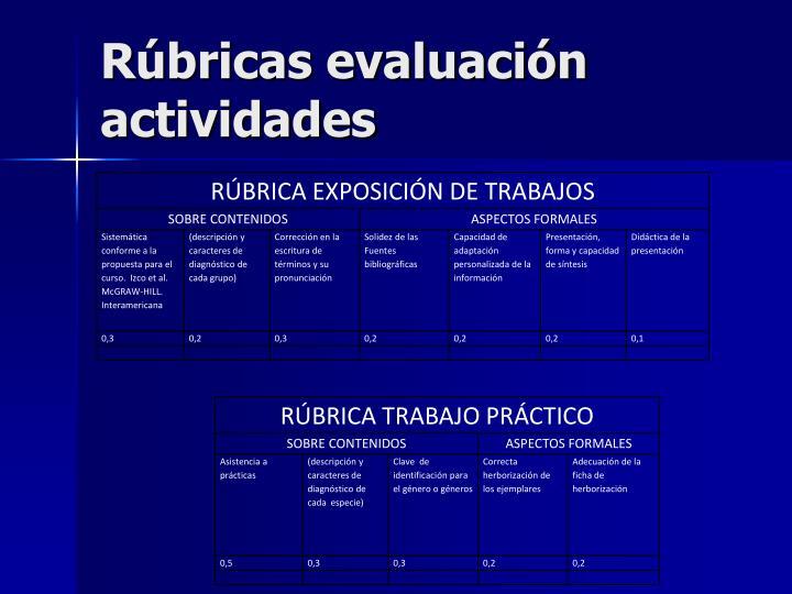 Rúbricas evaluación actividades