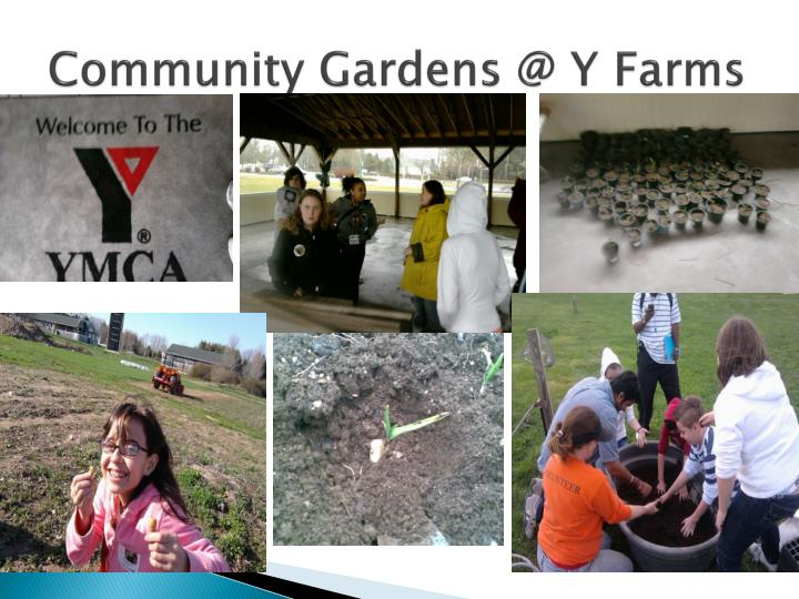 Community Gardens @ Y Farms