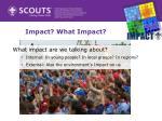 impact what impact