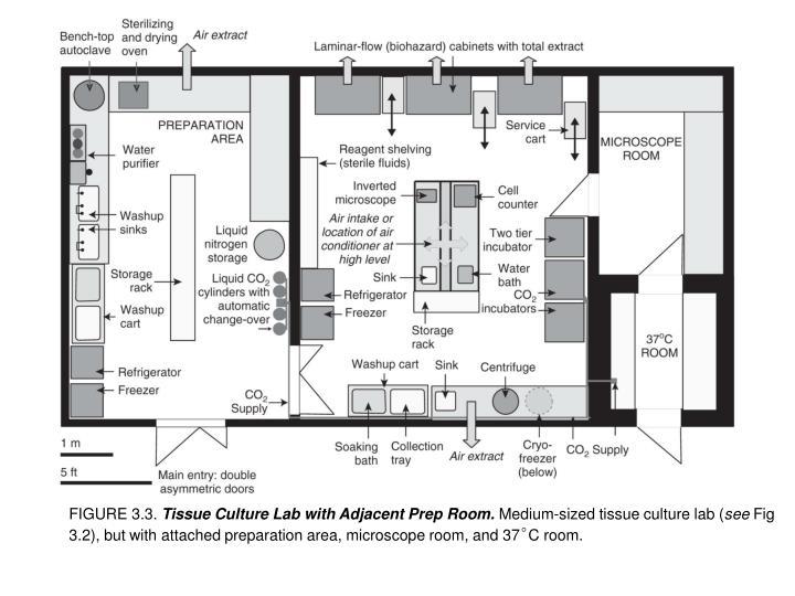 PPT FIGURE 34 Large Tissue Culture Laboratory Suitable for 20