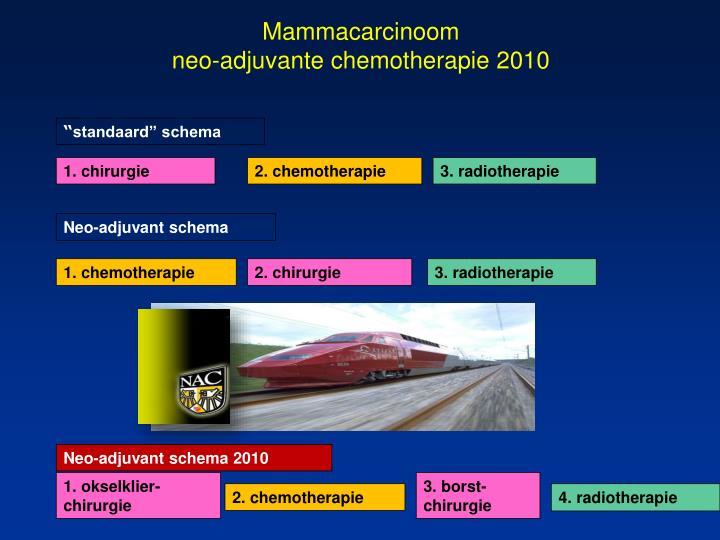 Mammacarcinoom