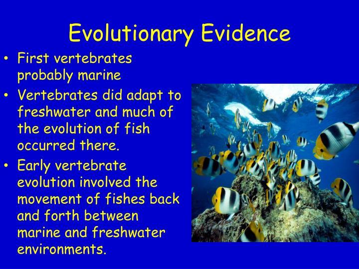 Evolutionary Evidence