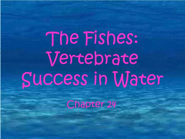 The fishes vertebrate success in water