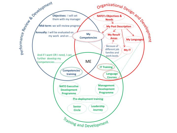 Organizational Design and Development