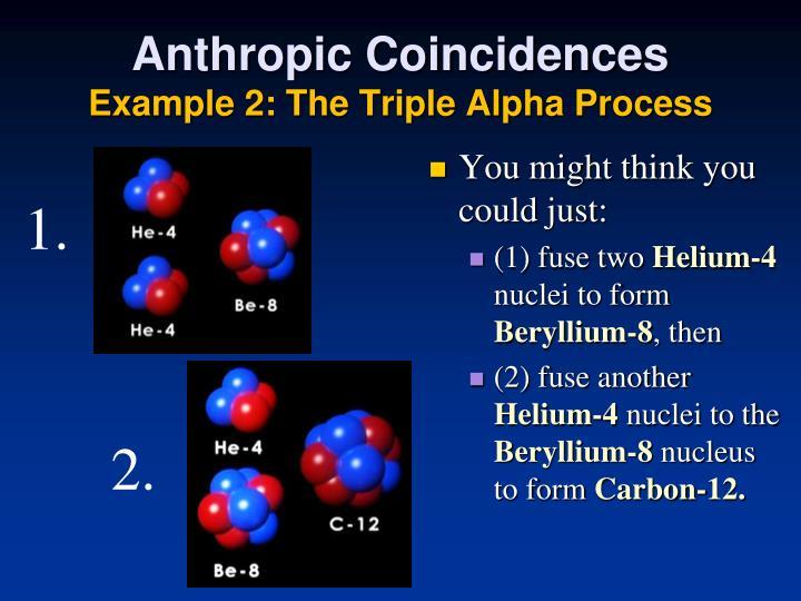 Anthropic Coincidences