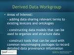 derived data workgroup1