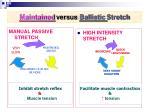 maintained versus ballistic stretch