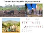 genetic susceptibility to podoconiosis
