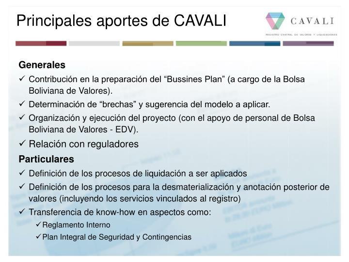 Principales aportes de CAVALI
