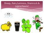 sheep rain guinness shamrock leprechauns