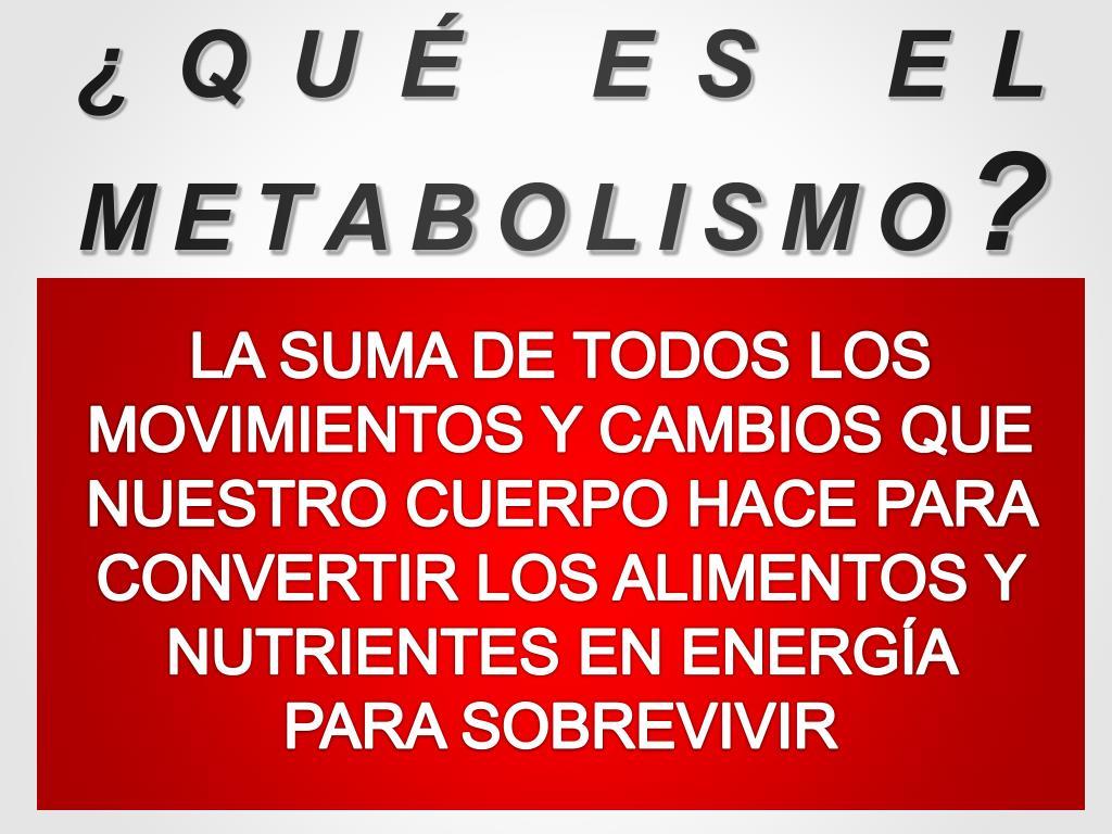 Que Es Metabolismo - Colección Completa De Instrucciones