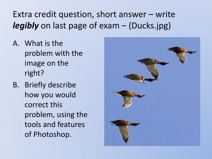 extra credit question short answer write legibly on last page of exam ducks jpg n.