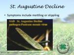 st augustine decline