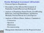 marine biological assessment will include
