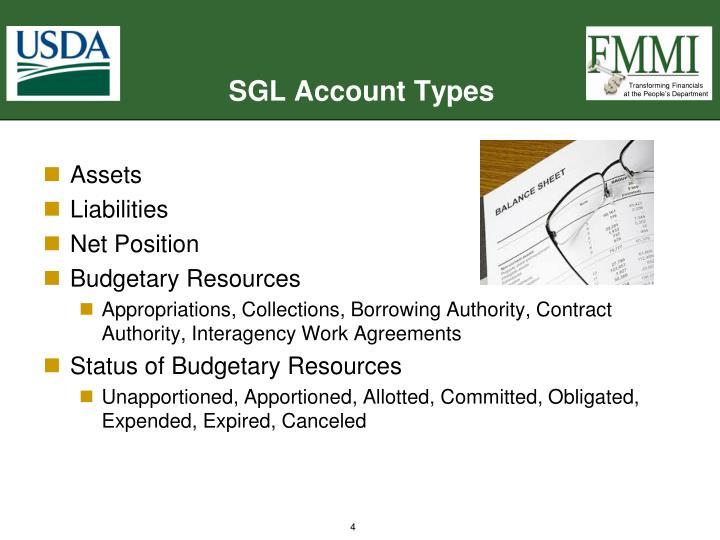 SGL Account Types