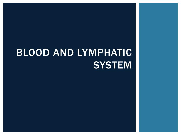 blood and lymphatic system n.