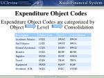 expenditure object codes