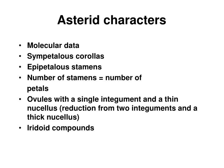 Asterid characters