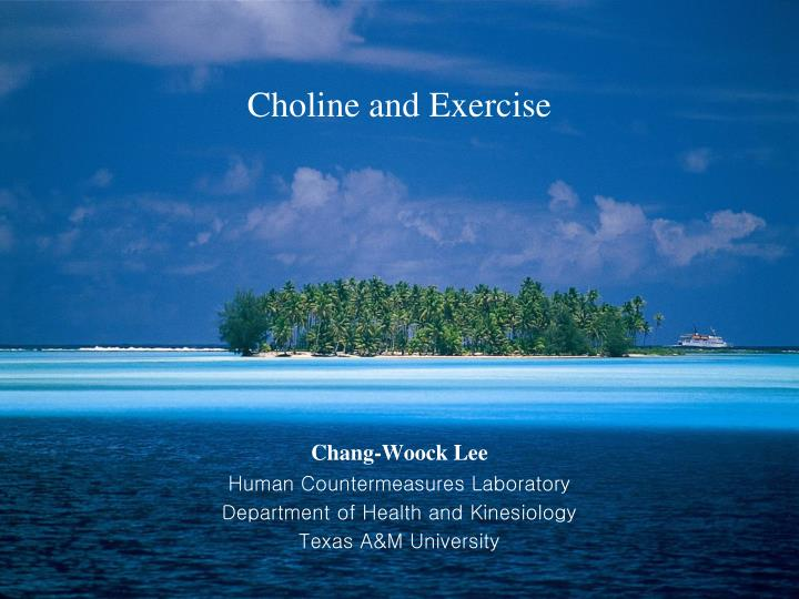 choline and exercise n.