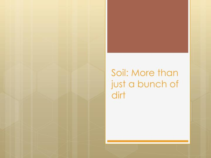 soil more than just a bunch of dirt n.