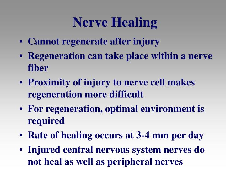 Nerve Healing