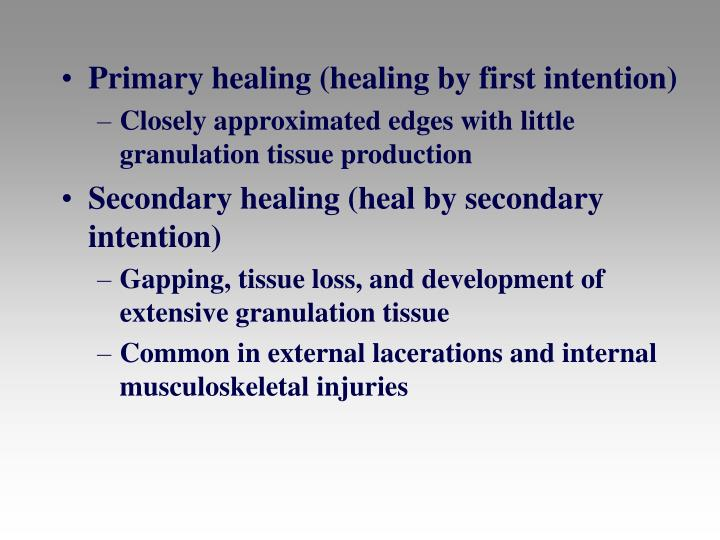 Primary healing (healing by first intention)