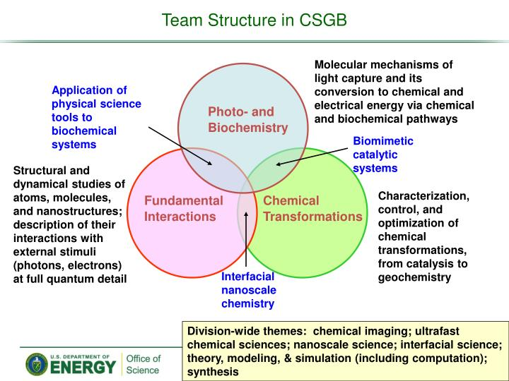 Team Structure in CSGB