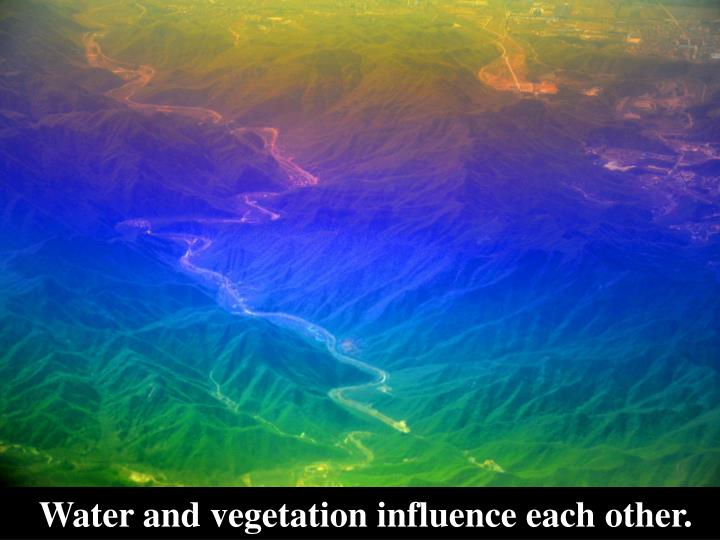 Water and vegetation influence each other.