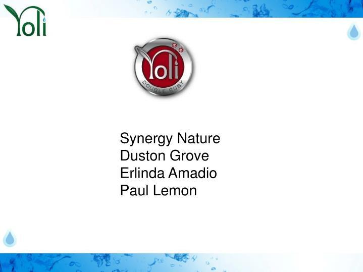 Synergy Nature