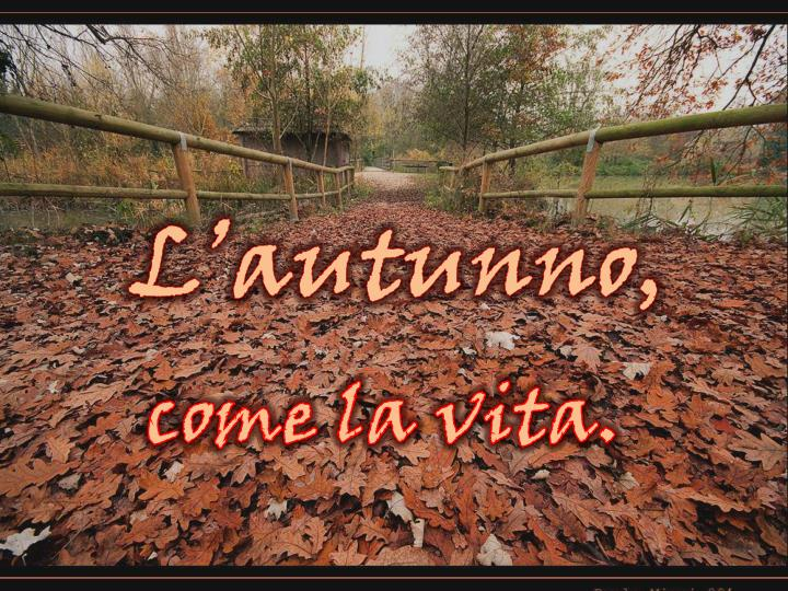 l autunno n.