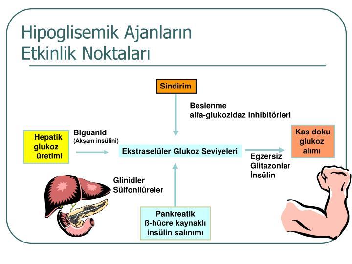 Hipoglisemik Ajanların