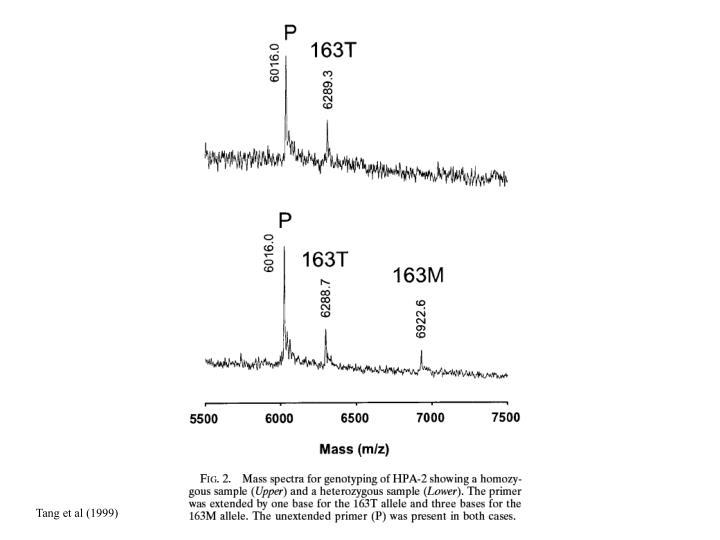 Tang et al (1999)