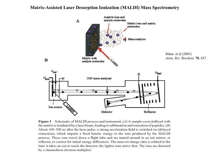 Matrix-Assisted Laser Desorption Ionization (MALDI) Mass Spectrometry