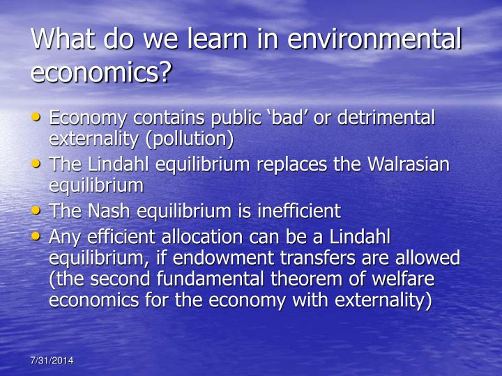 What do we learn in environmental economics?