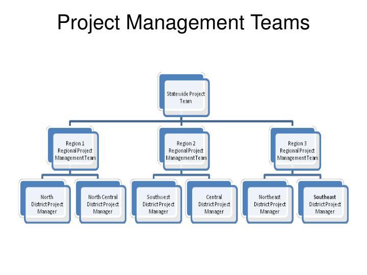 Project Management Teams