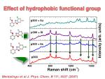 effect of hydrophobic functional group