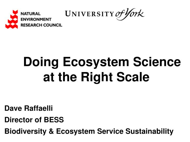 doing ecosystem science at the right scale n.