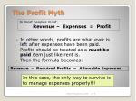 the profit myth