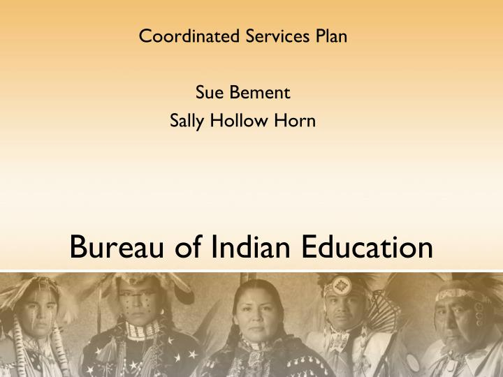 coordinated services plan sue bement sally hollow horn n.
