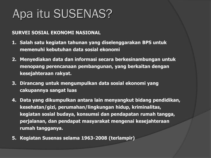 Apa itu SUSENAS?