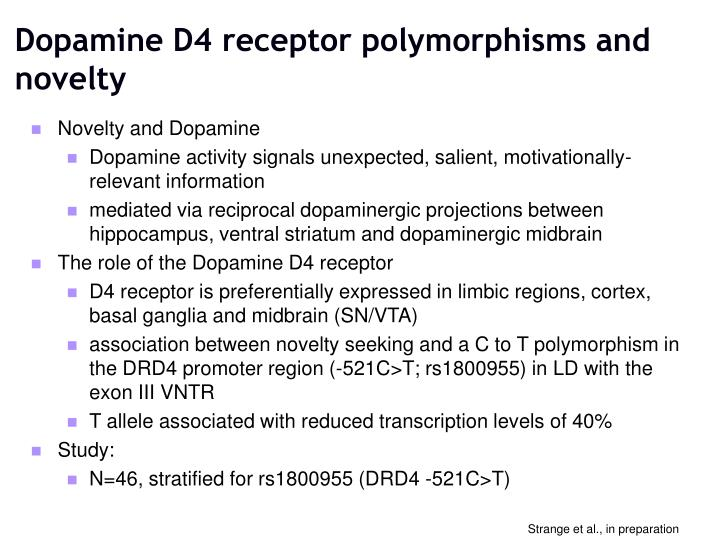 Dopamine D4 receptor polymorphisms and novelty