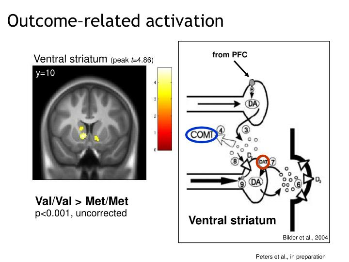 Outcome–related activation