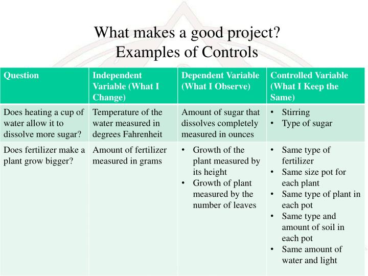 What makes a good project