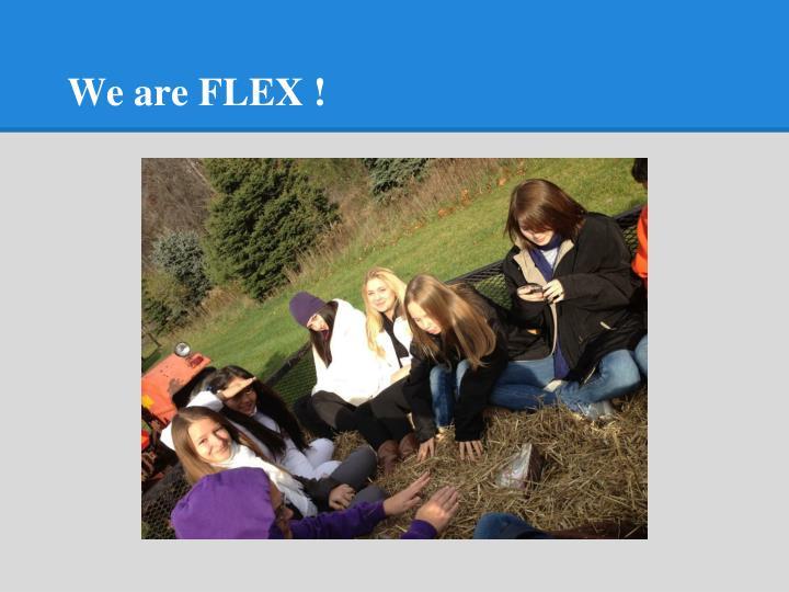We are FLEX !