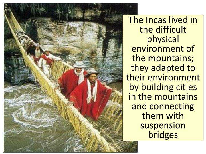 The Incas lived in the difficult physical environment of the mountains; they adapted to their environment by building cities in the mountains and connecting them with suspension bridges