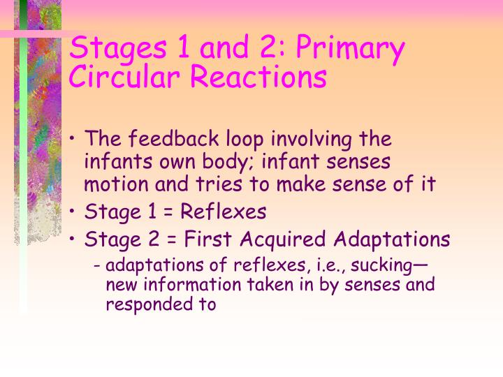 Stages 1 and 2 primary circular reactions